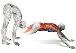 "Dynamic Stretch Example 3: Hand Walks AKA ""The Worm"""
