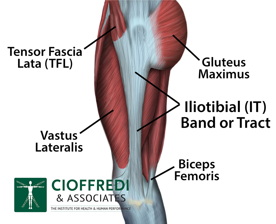 Itb Iliotibial Band Syndrome Cioffredi Associatescioffredi